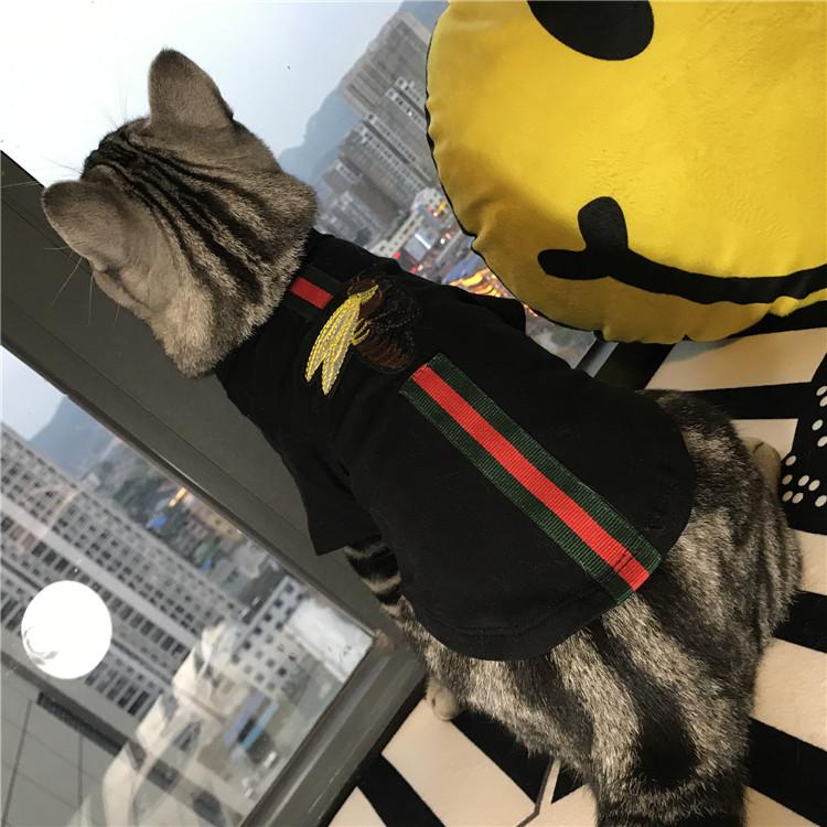 Gucci 猫犬服