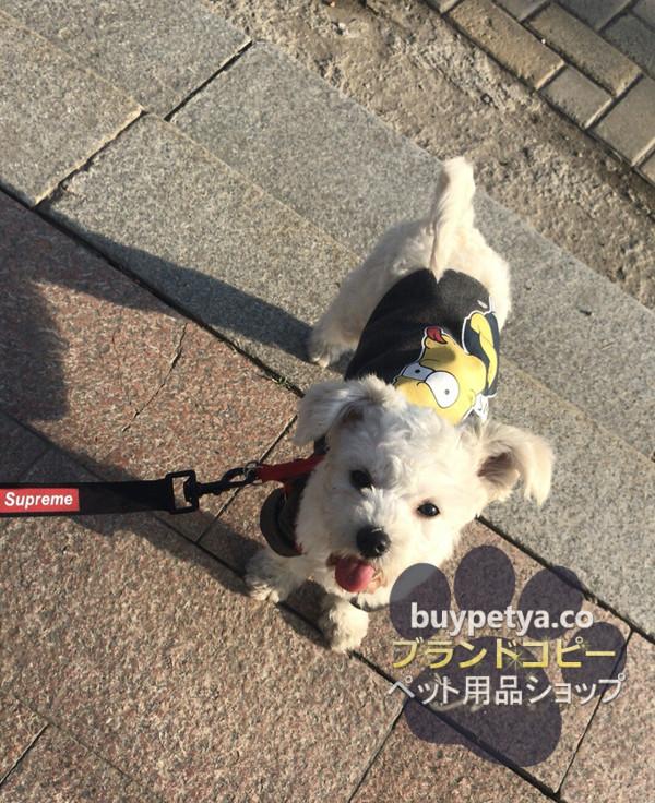 シュプリーム 犬用リード