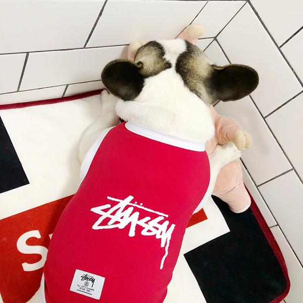 ステューシー 犬の服